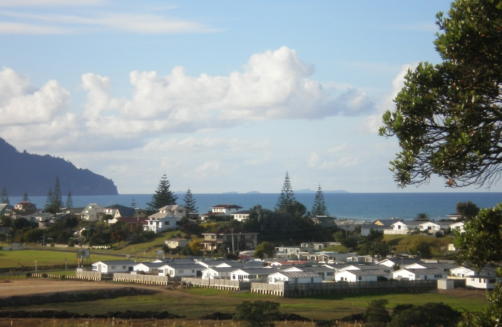 Site photo of Seaford Park Waihi Beach
